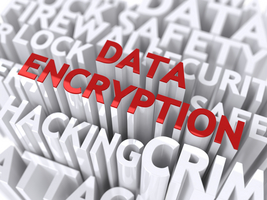 Data Encryption Concept. The Word of Red Color Located over Text of White Color.